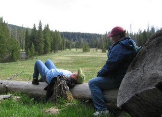 Yellowstone Park, quiet time.